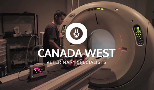 Canada West Veterinary Specialists